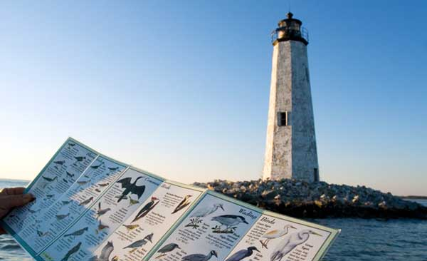 New Point Lighthouse - Mathews County, Virginia